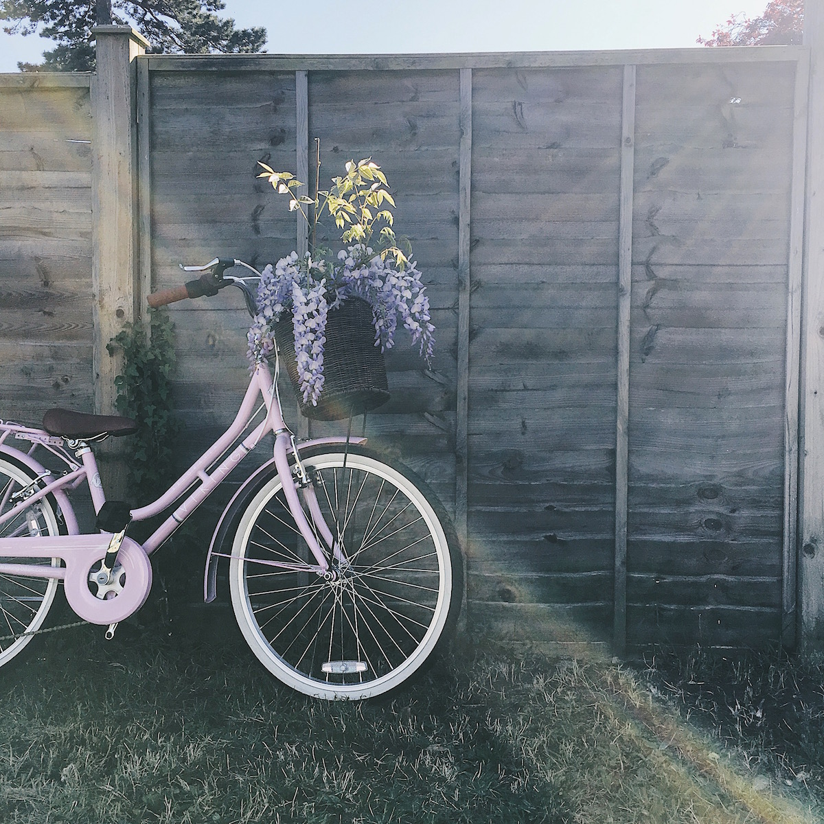Ideas for Instagram photo props & hashtags - bikes and sunlight