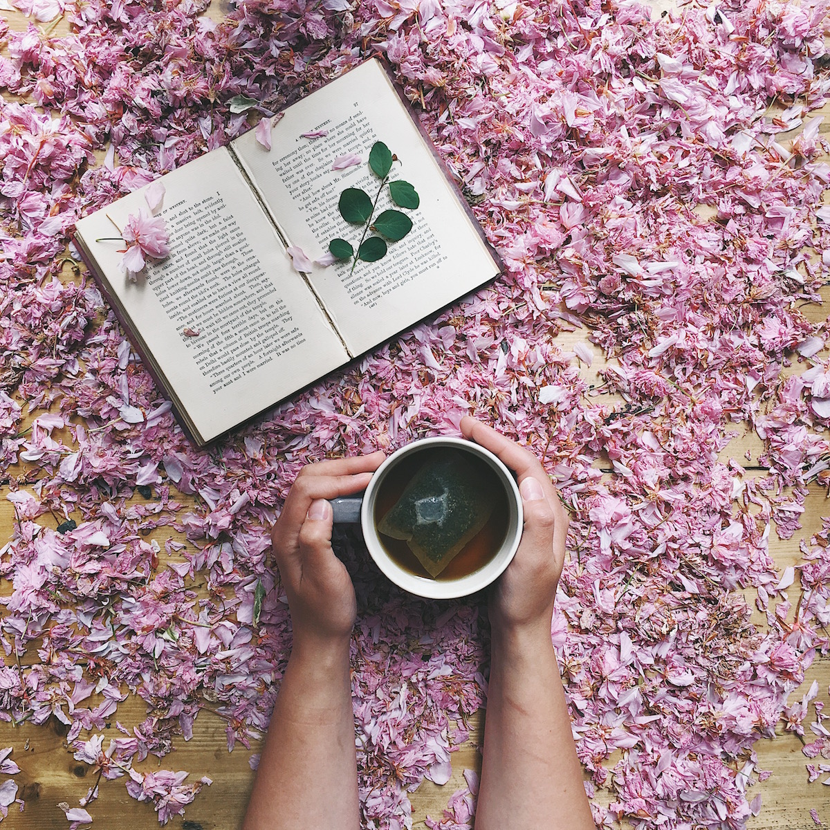 Ideas for Instagram photo prop ideas & hashtags - petal, hot drinks and flowers