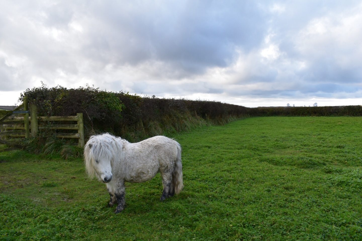 Baby Friendly Boltholes Woodlands Manor Farm Travel Review